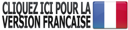 french-version-icon